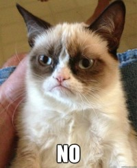 Grumpy-Cat-No